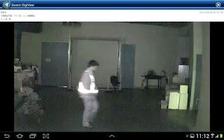 Screenshot of Swann DigiView