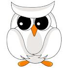 Owl Live Wallpaper icon