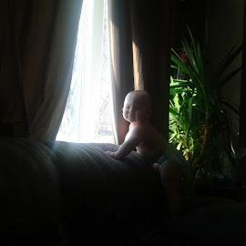 Morning monkey by Allyson Martin - Babies & Children Babies
