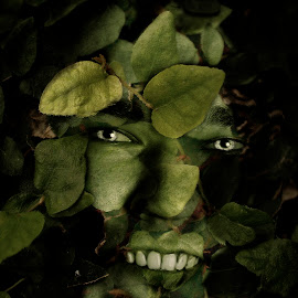 Green Man by Jacki Jacobs - Digital Art People ( fantasy, secret garden, art, green man, fairytale )