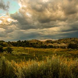 by Stephen  Barker - Landscapes Prairies, Meadows & Fields