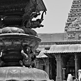 tanjore big Temple - 1000 years old by Ivon Murugesan - Buildings & Architecture Statues & Monuments ( monuments, tanjore, statue, building, statues, buildings, india, monument, architecture, people, portrait )