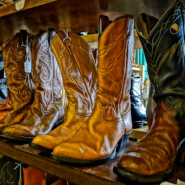 Polished and Ready for  New Owner by Barbara Brock - Artistic Objects Clothing & Accessories ( shoes, cowboy boots, footwear, western boots, , artistic, object )