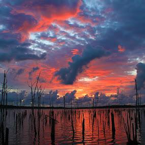 by Roger Becker - Landscapes Sunsets & Sunrises