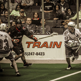 catching the ball by Enrique Santana Carballo - Sports & Fitness Lacrosse ( sports, game, vancouver, lacrosse, rochester )