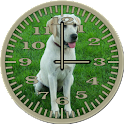 Dog 3 Labrador Analog Clock icon