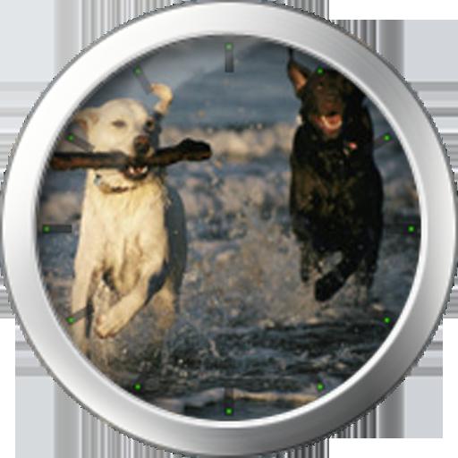 個人化App|Labrador Theme LOGO-3C達人阿輝的APP