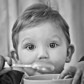 More Please by Karen Raymond Burke - Babies & Children Children Candids ( child, sweet, black and white, cute, toddler, close up, boy, portrait, eyes )