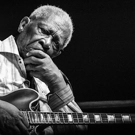 B.B.King - In Thought by Katja Liebing - People Musicians & Entertainers ( music, b.b.king, jazz, musician, portrait, blues )