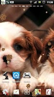 Screenshot of Puppy Dog live wallpaper