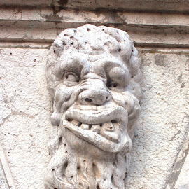 Venice Gargoyle by Timothy Carney - Buildings & Architecture Architectural Detail ( sculpture, gargoyle, venice, head, grotesque )