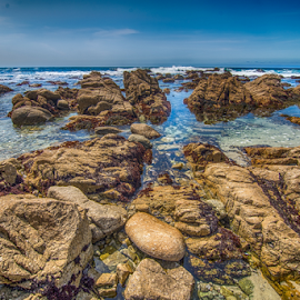 Rock scape in Pebble Beach, California by Kathy Dee - Nature Up Close Rock & Stone ( water, pebble, california, tourism, ocean, beach, travel, coastline, coastal, coast, tides, tourist, vacation, tidepools, blue, brown )