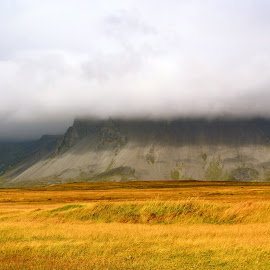 yellow grass in Iceland by Tyrell Heaton - Landscapes Prairies, Meadows & Fields ( clouds, iceland, yellow grass )