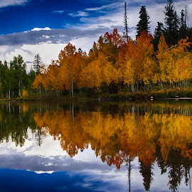 Along The Lake by Dewey Farmer - Landscapes Waterscapes ( water, reflection, green, colors, travel, yellow, landscape, mirror, adventure, sky, red, season, nature, utah, blue, fall, trees, gold,  )