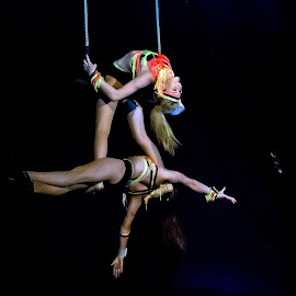 Circus Performers by Adele Southall - News & Events Entertainment ( entertainment, circus )