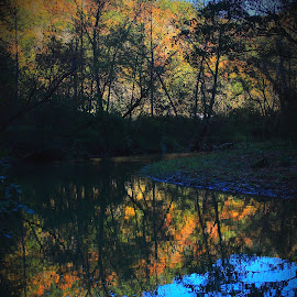 Greasy Creek Kentucky by Paul Mays - Landscapes Mountains & Hills ( fall, color, colorful, nature,  )