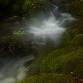 Flowmotion by Peter Samuelsson - Nature Up Close Water ( water )