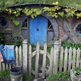 Blue Hobbit Door by Venetia Featherstone-Witty - Buildings & Architecture Homes ( hobbit cottage, hobbit home, hobbits, hobbiton, new zealand, movie set,  )