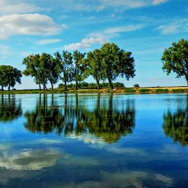 Lake Lajmir  by Željko Salai - Landscapes Waterscapes