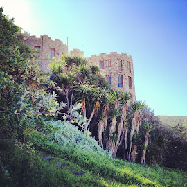 Curious Castle by Elaine Alberts - Buildings & Architecture Homes ( #castle, #stonehouse, #magical )