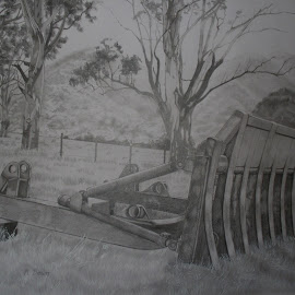 Out to Pasture by Marilyn Brown - Drawing All Drawing ( pencil, paddock, sifter, root, in, drawing )