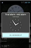 Screenshot of Final Alarm