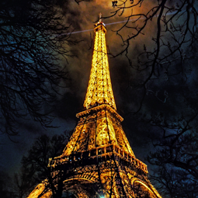 Tour Eiffel by Andrea Conti - City,  Street & Park  Historic Districts ( history, paris, tour eiffel, building, tower, eiffel, france, monument, night )