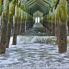 Apache Pier by Eve Spring - Landscapes Beaches ( water, sand, atlantic ocean, sc, apache pier, ocean, myrtle beach )