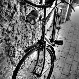 Black and white bike by Mark Thompson - Transportation Bicycles ( bike, wheel, lamp, bricks, light, bicycle )