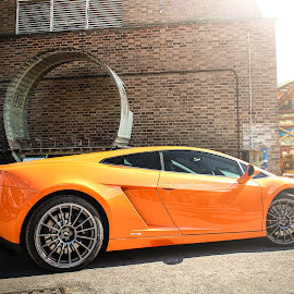 Lamborghini Gallardo by Will Foster - Transportation Automobiles ( automobiles, car, italian, engine, sports car, photo shoot, super car, lamborghini gollardo, lamborghini, photography, automotive, plane, lambo, cars, v10, fast )