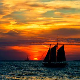 southern by Michael Weberberger - Landscapes Beaches ( sonnenuntergang, weberbergermichael, sunset, www.tauchfoto.at, sailboat, ocean view,  )