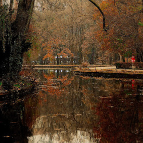 by Renata Kučan - City,  Street & Park  City Parks