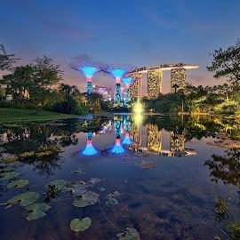 Pond @ GBTB by Kafoor Sammil - City,  Street & Park  City Parks ( gbtb, mbs, pond, singapore )