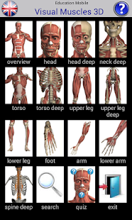 Visual Muscles 3D screenshot for Android