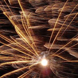 Firework by Email Walla - Abstract Fire & Fireworks ( firework )