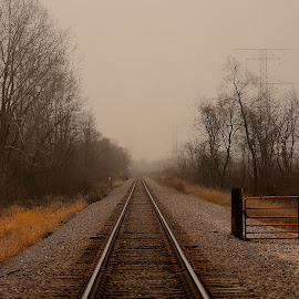 dead end by Jay Anderson - Landscapes Travel ( trian, fog, rail, trees, tracks, fogy )