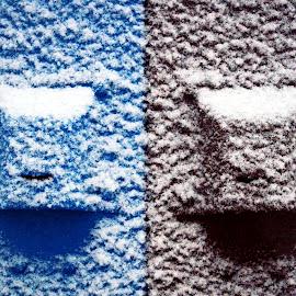 Garbage Bins by Joerg Schlagheck - Abstract Macro ( matal, bear proof., park, pattern, blue, snow, bin, garbage, gree )