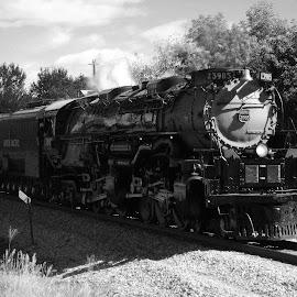 Union Pacific Challenger by Dan Dusek - Transportation Trains ( railroad tracks, black and white, steam train, locomotive, transportation,  )