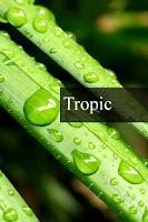 Screenshot of Tropic rain forest stress