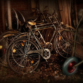 by Baerbel Pleuger - Transportation Bicycles ( Bicycle, Sport, Transportation, Cycle, Bike, ResourceMagazine, Outdoors, Exercise, Two Wheels )