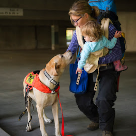 Belle's Family by Greg Varney - People Family ( training, search and rescue, mother, daughter, belle, airscent, kcsd,  )