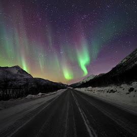 Northern light road by Marius Birkeland - Transportation Roads ( sky, aurora, aurora borealis, arctic, road )