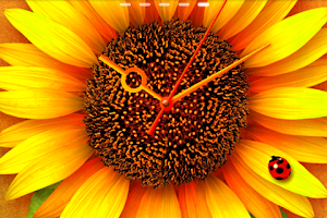 Screenshot of SunFlower* LWP Trial