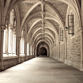 Cloister by Leah Tan - Buildings & Architecture Architectural Detail (  )