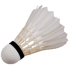 Compete - Badminton Edition icon