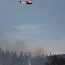 Lytton Forest Fire by Kansas Allen - News & Events Disasters ( helicopter, canada, lytton, trees, forestry, chopper, forest, bc, smoke, fire )