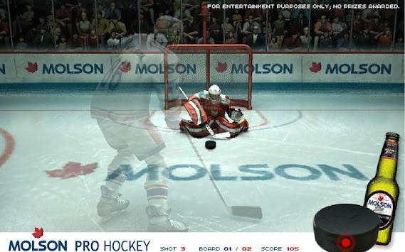 essay on game - hockey