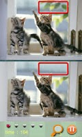 Screenshot of Find Differences - Cat