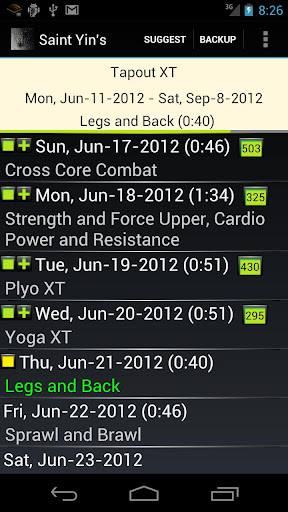St. Yin's DVD Workout Tracker