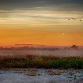 foggy sun by Rob Giannese - Landscapes Sunsets & Sunrises